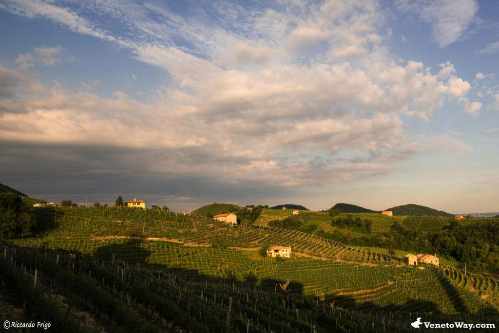 Valdobbiadene - Tra le Vie del Vino Prosecco