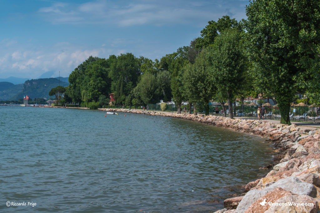 Cisano - Lago di Garda