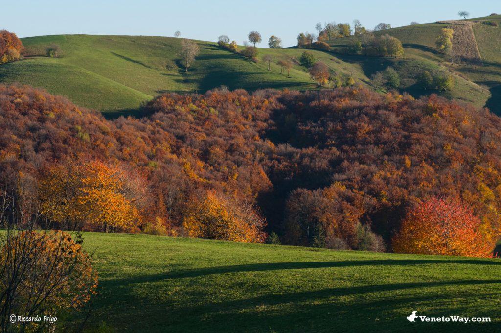 The Lessinia Natural Regional Park