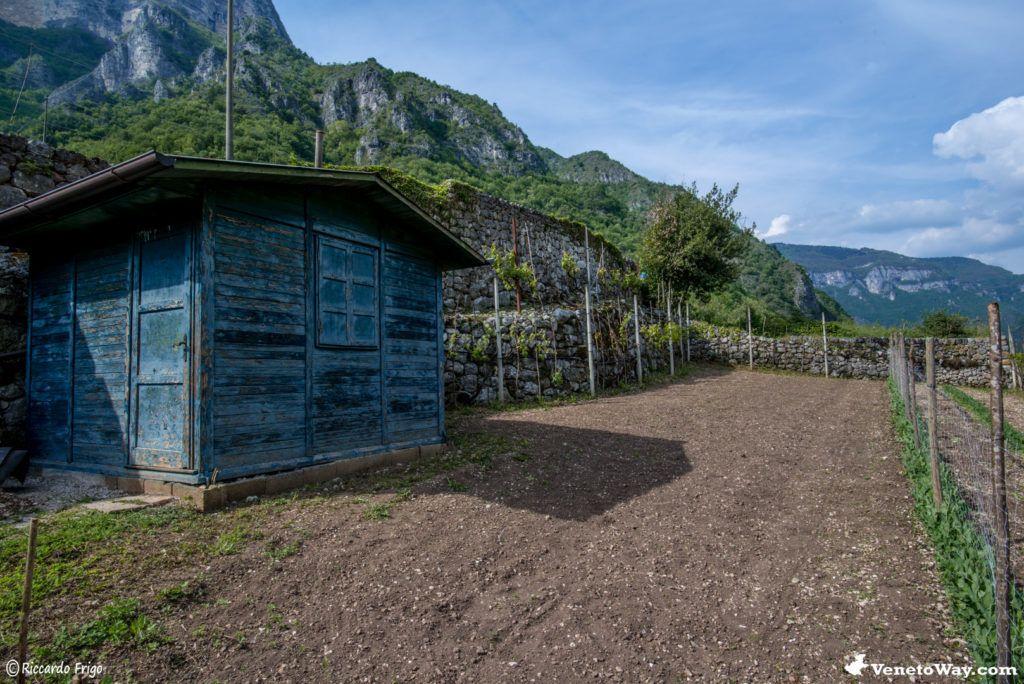 Terrazzamento nel Canale del Brenta - La Valsugana