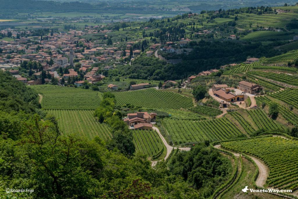 Sant'Ambrogio di Valpolicella - Tra le Vie della Valpolicella