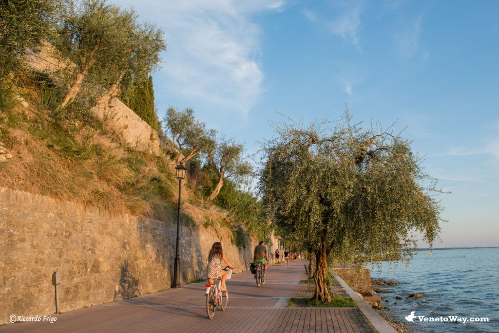 The Walk from Lazise to Garda