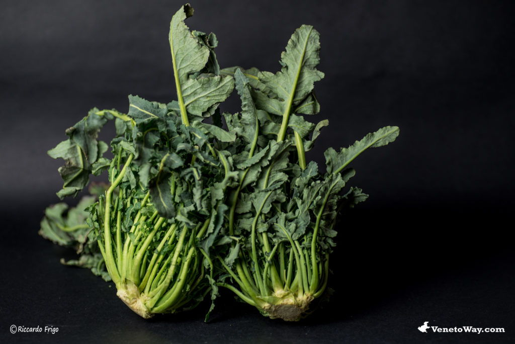 Broccolo Fiolaro from Creazzo
