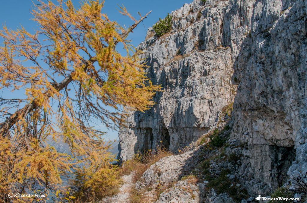The Ortigara Mount
