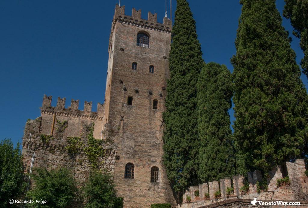 The Conegliano Castle