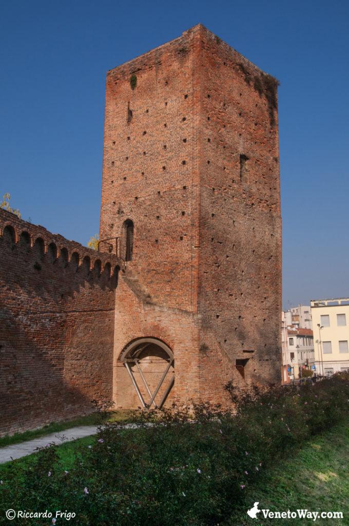 Mozza Tower