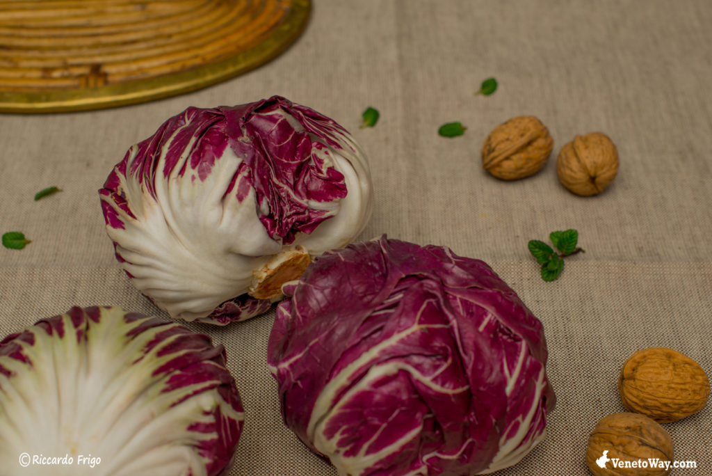 The Chioggia Radicchio