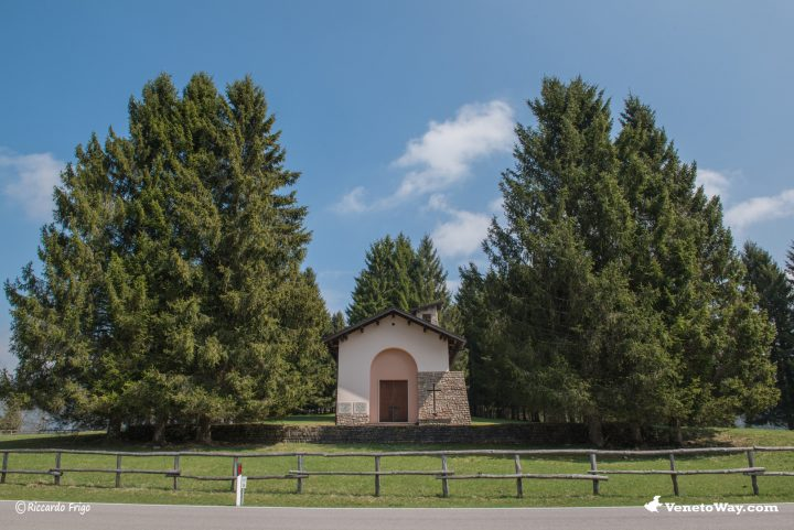 Bosco del Cansiglio - Alpago