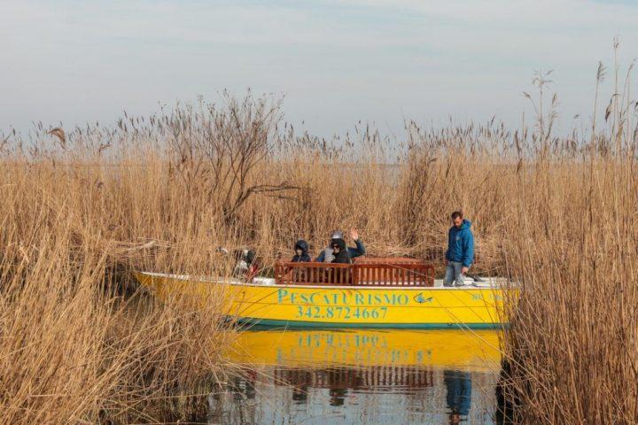 Escursioni Naturalistiche sul Delta del Po