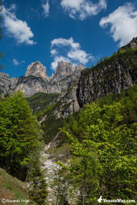 Il Parco Nazionale delle Dolomiti Bellunesi