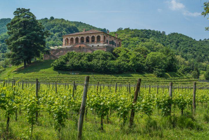 Villa dei Vescovi - Colli Euganei