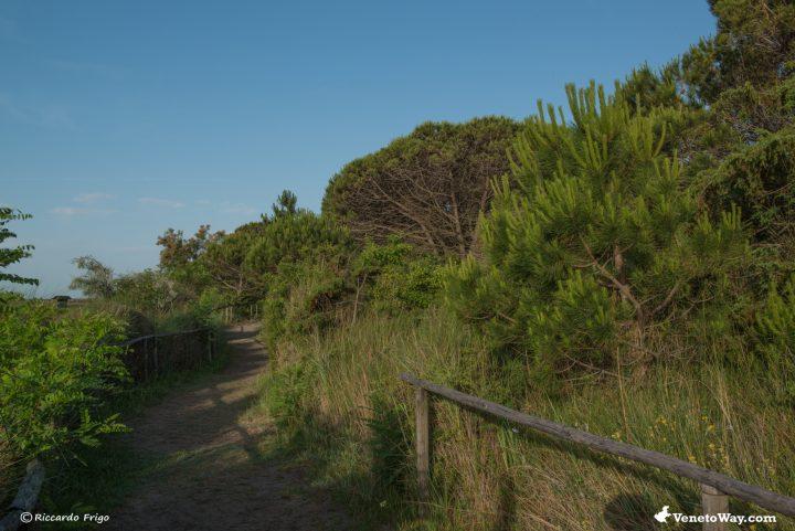 Giardino Botanico Litoraneo Porto Caleri