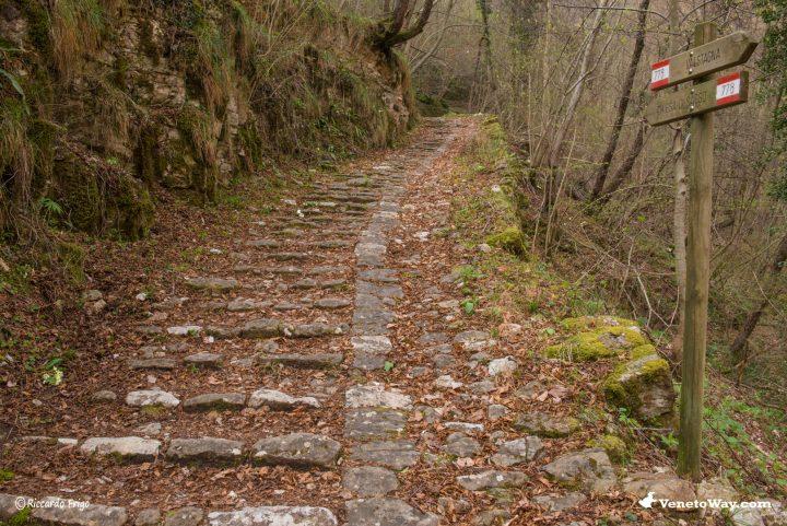 L'escursione alla Calà del Sasso