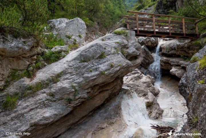 Escursione al Rifugio Bosconero