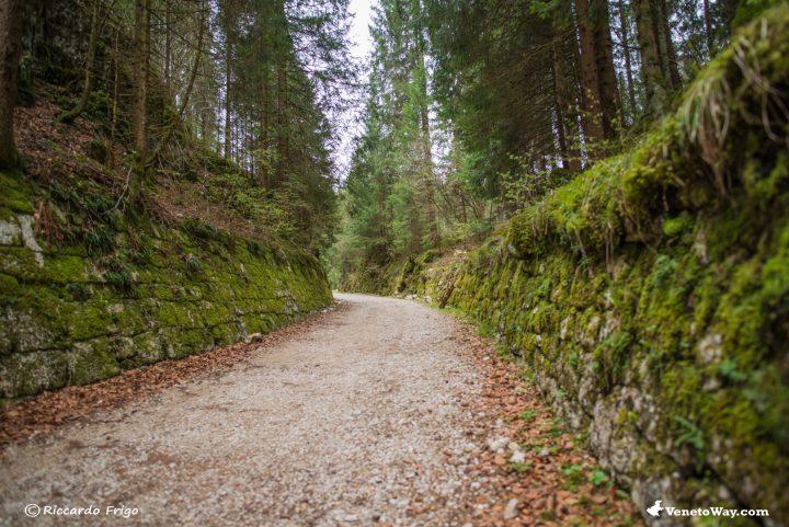 Strada del Trenino