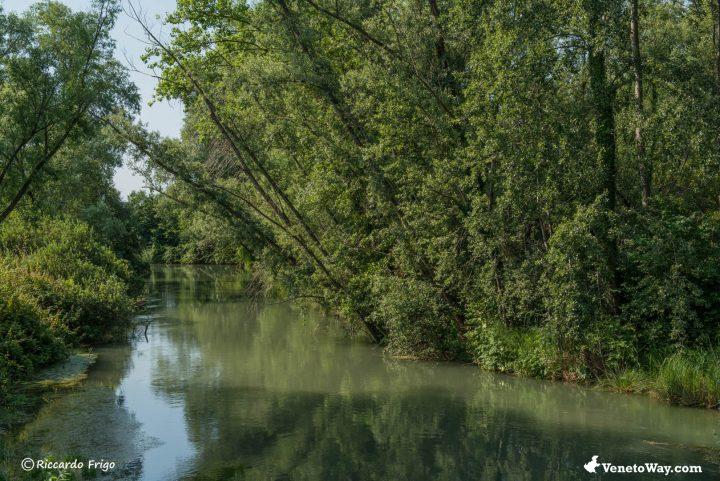 La Pista Ciclabile Treviso – Ostiglia